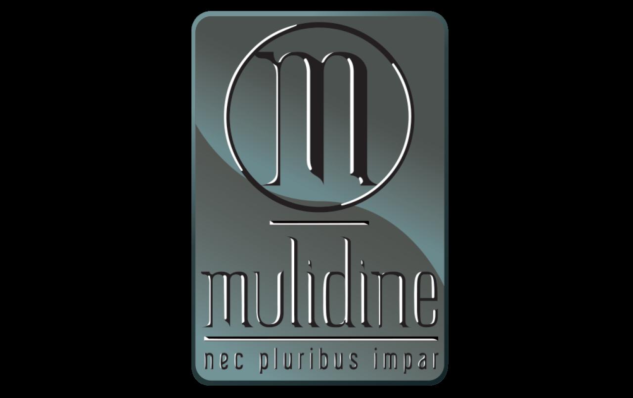 Logo Crista Technologies - Mulidine